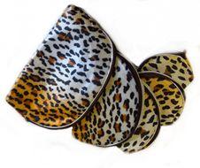 5-dielna sada kozmetických tašiek s tigrím motívom