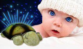 Svietiaca korytnačka - zelená