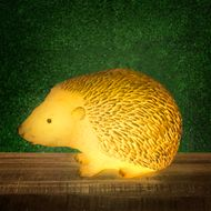 LED solárny ježko